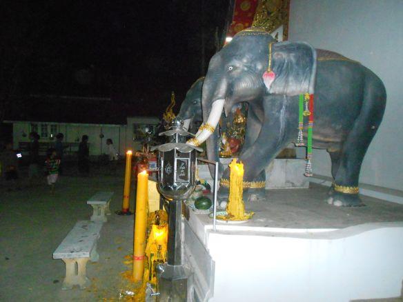 wat phuket elephant