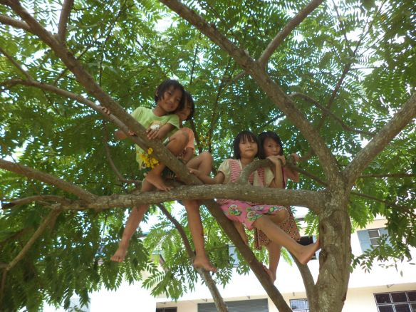 tree girls